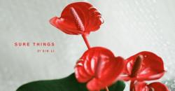 Sure Things by Xin Li