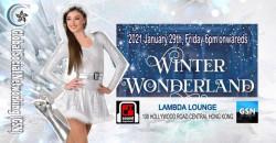 Winter Wonderland Night