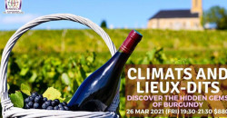 Climats and Lieux-dits. Discover the hidden gems of Burgundy