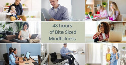 48 hours of Bite Sized Mindfulness